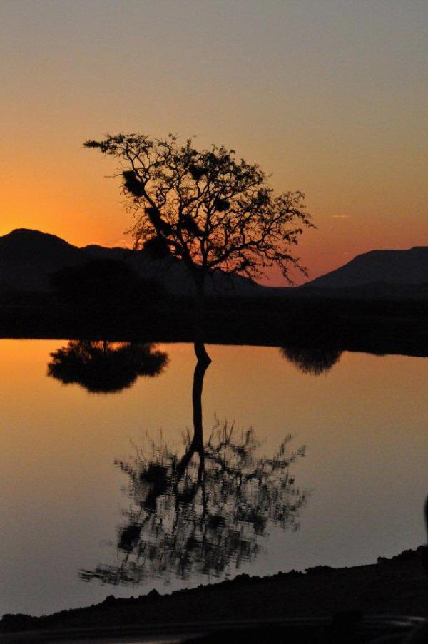 Tlou Dam, Tau, Madiwe Game Reserve